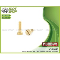 NSR 4836 Brass Body Screws